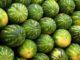 watermelon_viaPixabay